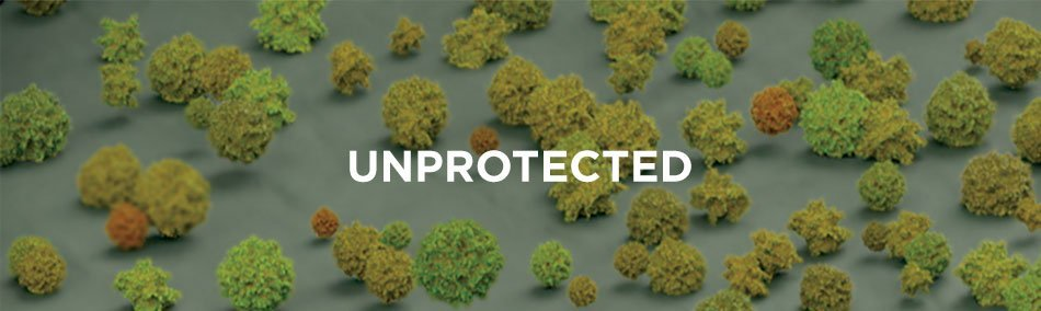 unprotected-lots-of-bacteria